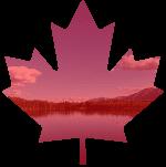 feuille d'érable rouge et nature du Canada