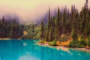 lac bleu et grands arbres - nature sauvage du Canada